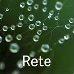 150_rete