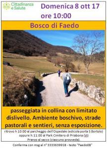 20171008 BoscoFaedo