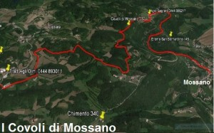 TrekPerc Mossano