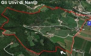 TrekPerc Nanto